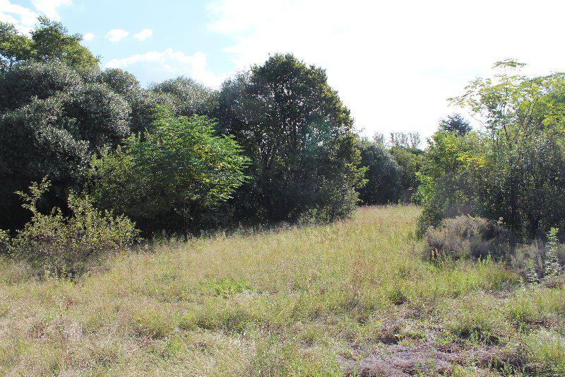 Property For Sale in Glenferness, Midrand 6