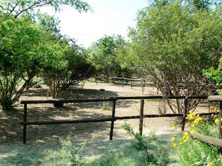 Property For Sale in Glenferness, Midrand 18